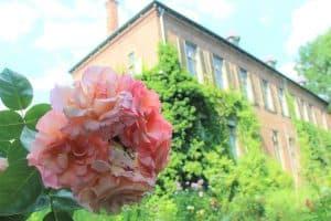 Flora en fauna op landgoed Huis Sevenaer