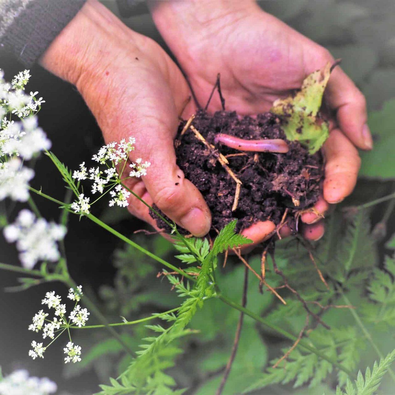 mens plant en dier Huis Sevenaer